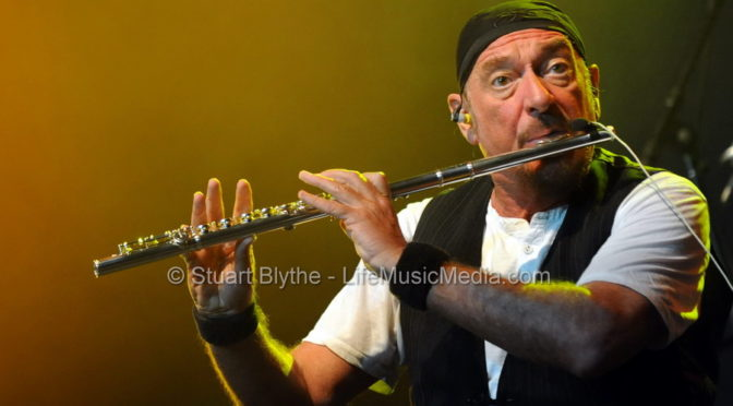 Photo Gallery : Byron Bay Bluesfest 2011 – Day 5